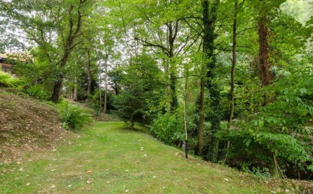 Garden and Woodland