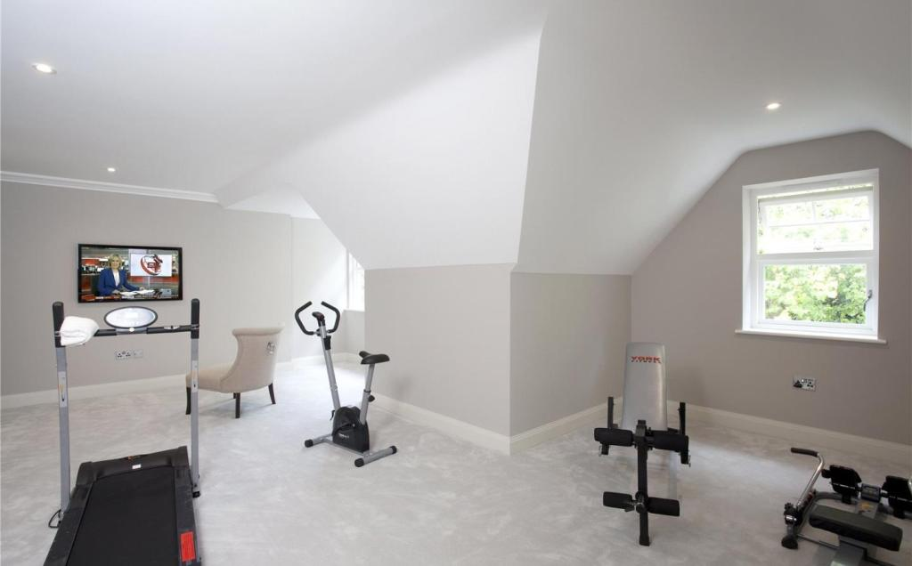 Play Room / Gym