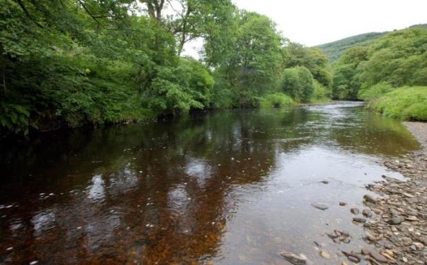 River Ruel
