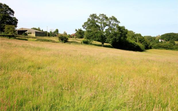 Barn and Fields NE