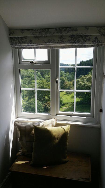 View from sitt...