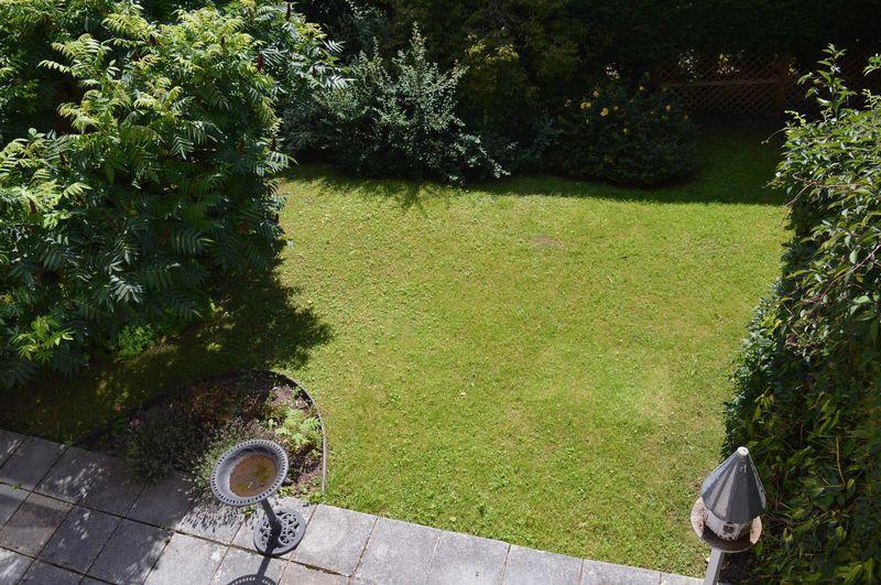 Rear lawn