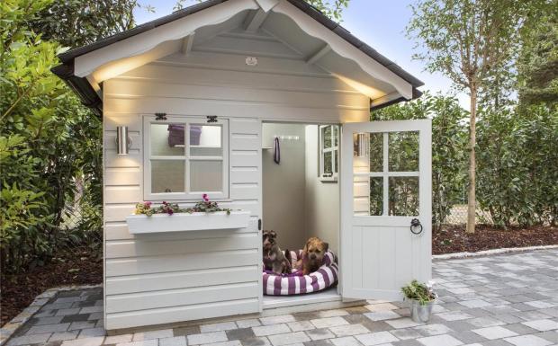 Dog Cottage