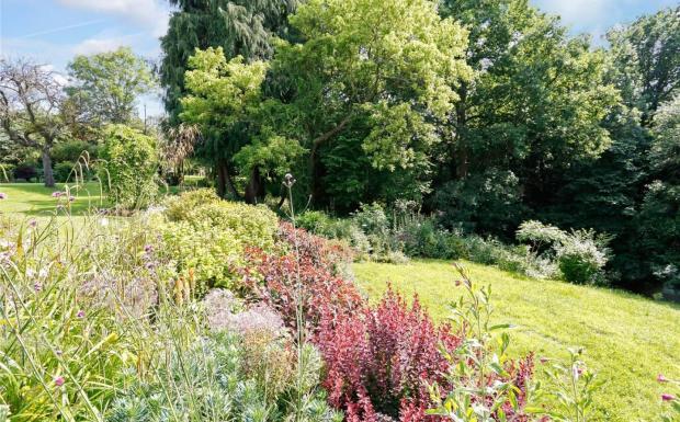 Garden Near The Cut