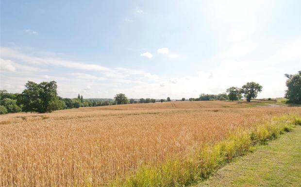 Farmland (Lot 2)