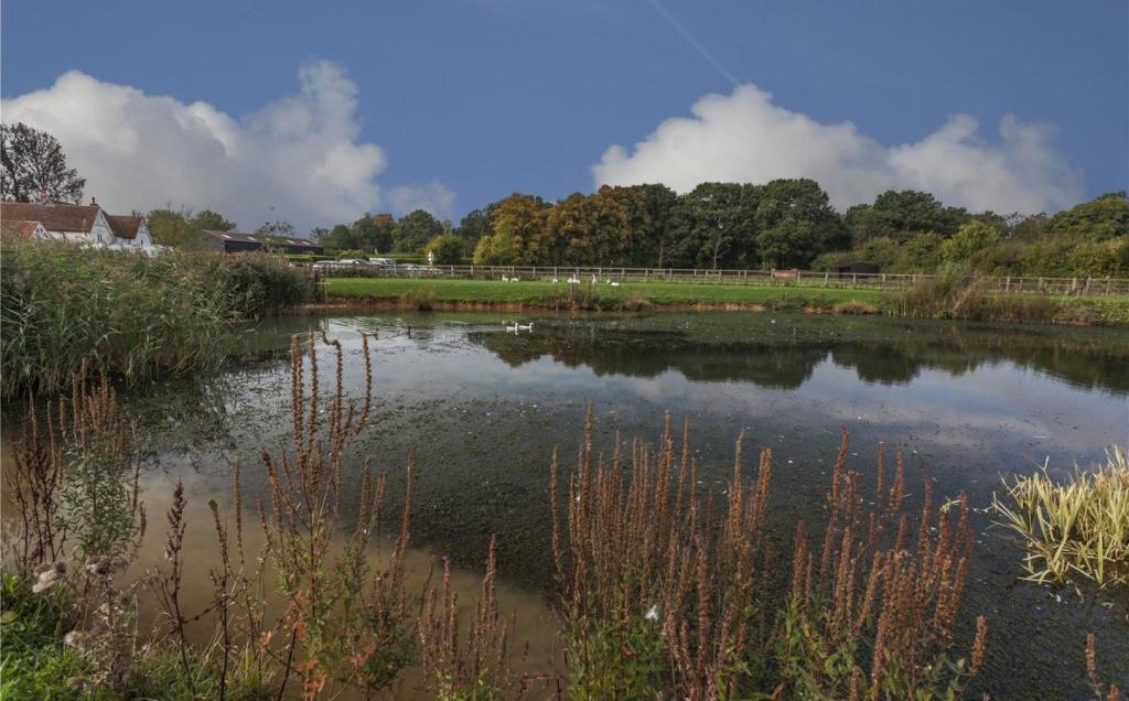 Pond (Lot 3)