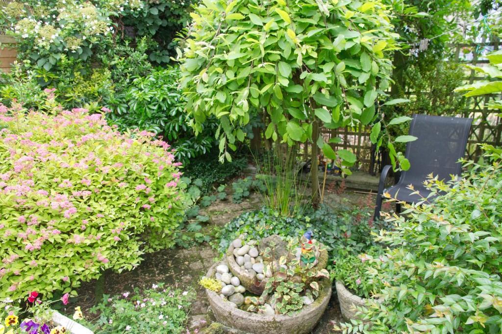 Garden with water...