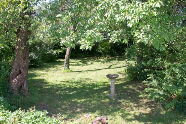 Delightful garden