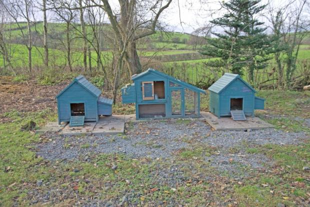 Hen huts in the o...