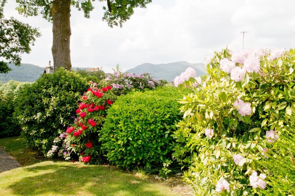 Gardens and View
