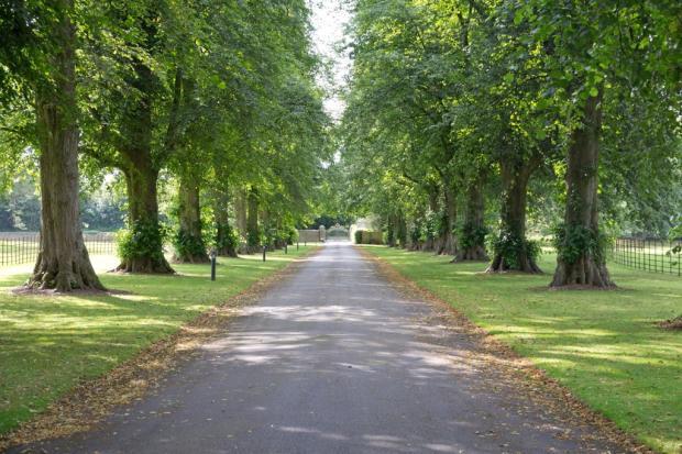 Avenue Approach
