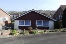 Bungalow to rent in Pellview Close, Binstead