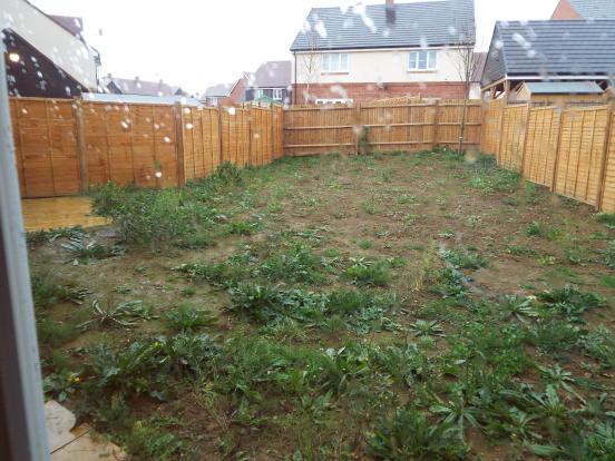 Garden will be turfed
