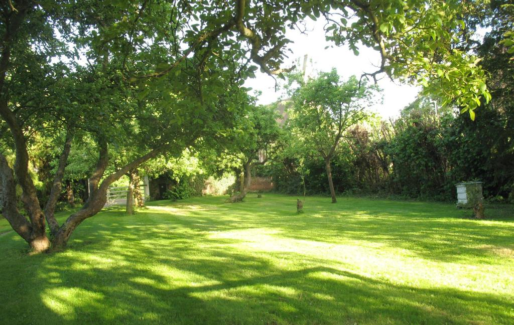 Manor_House-orchard
