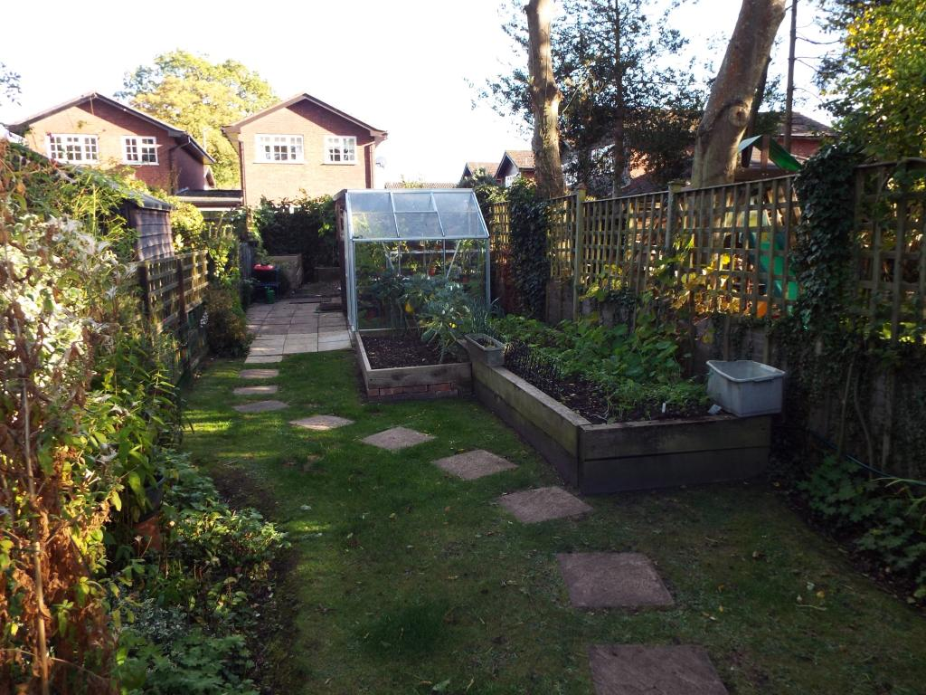 Vegetable garden and