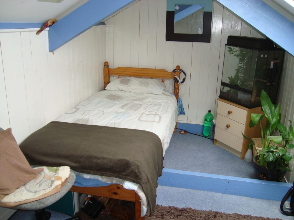 Usable Attic Room