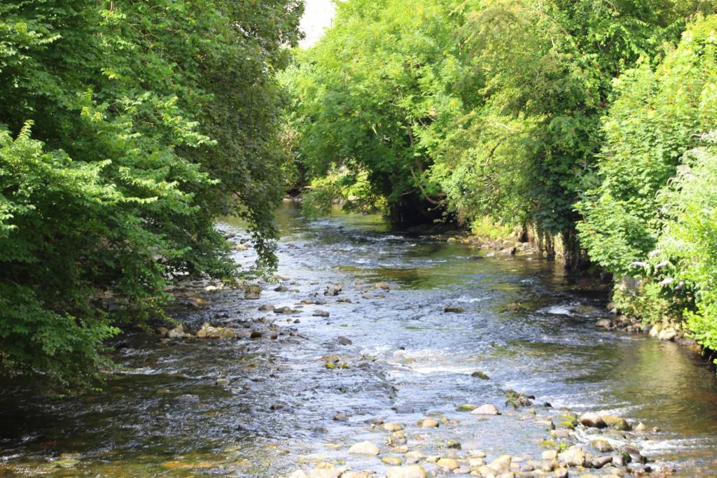 Nearby River Tavy