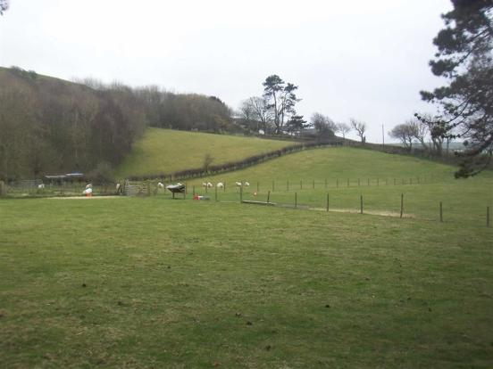5 acres of Pasture a