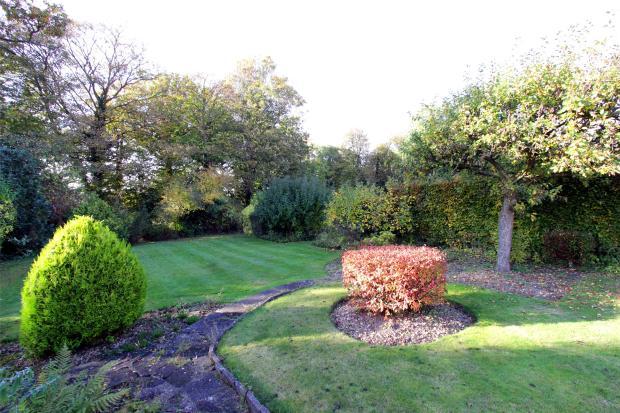 Rear Of The Garden