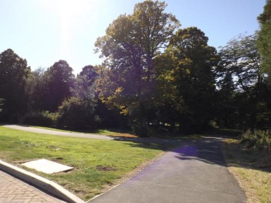 Park Walk Opposite