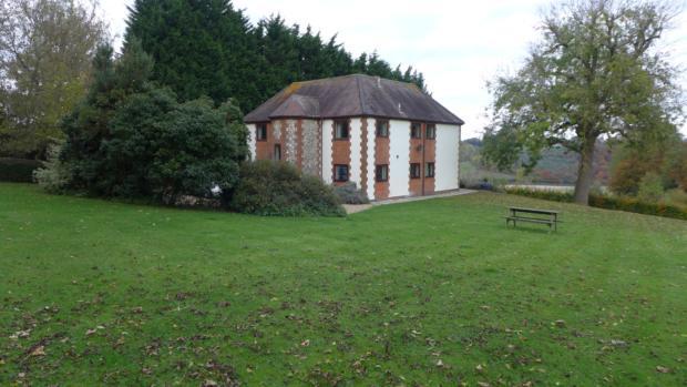 Bottom Farm Garden 044