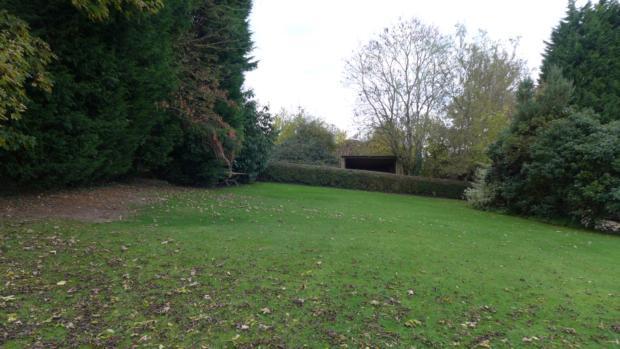 Bottom Farm Garden 043