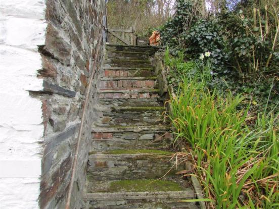 Steps leading to fro