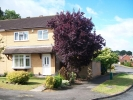 3 bed semi detached house to rent in Poachers Close, Glenfield