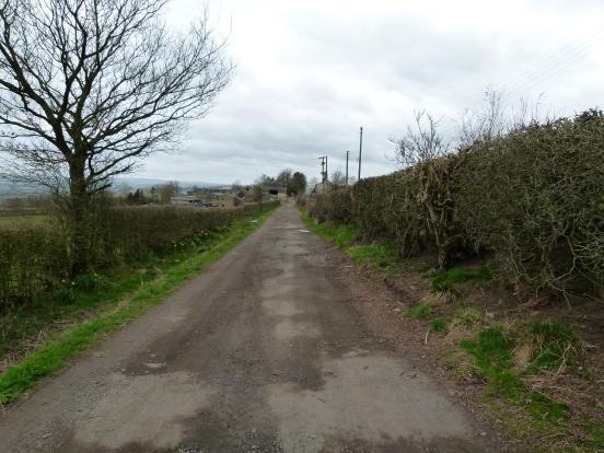 Lane to plot