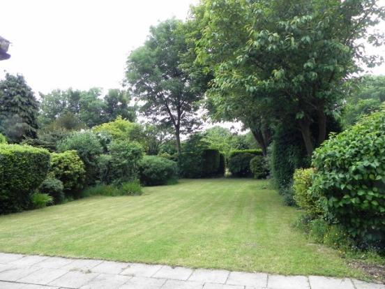 Rear Garden v1
