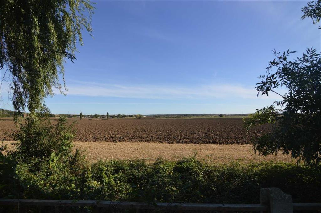 Stunning Field Views