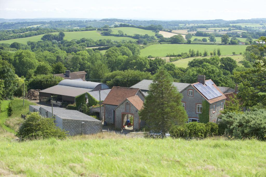 Auction Properties Dorset Rightmove
