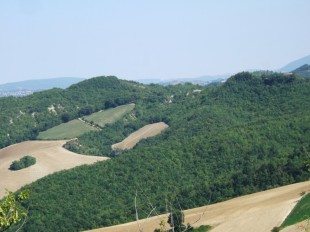 3 bed Villa for sale in Le Marche...