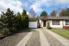 1 Parkside Court Semi-Detached Bungalow for sale