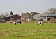 Land for sale in Hill Farm Cottages...