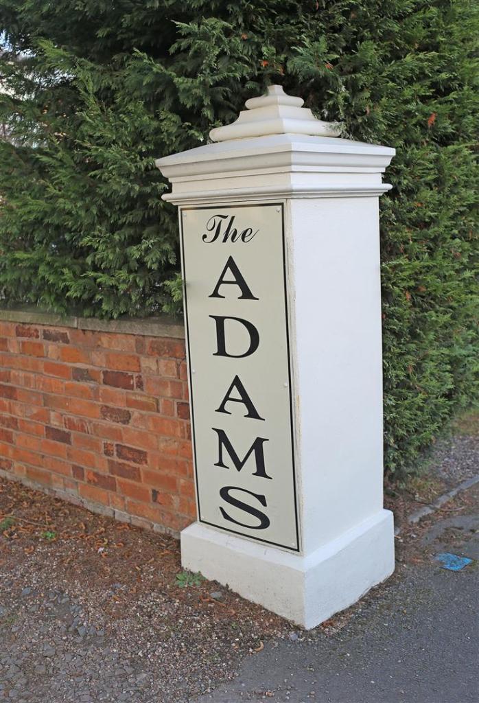 Adams_058.JPG
