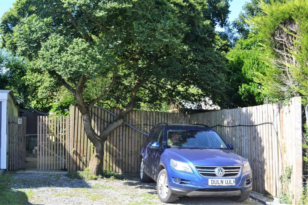 Yard Area/Outdoor