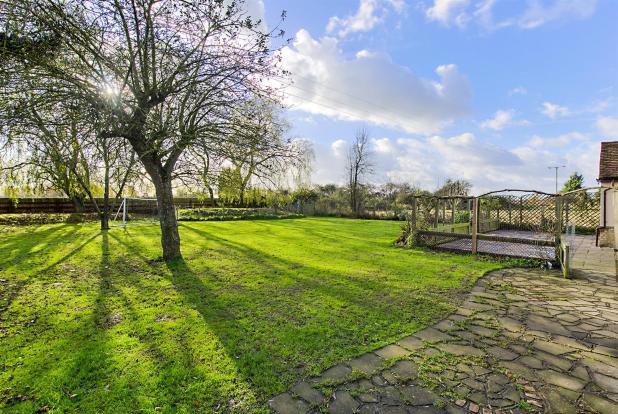 Willow End Garden2.j
