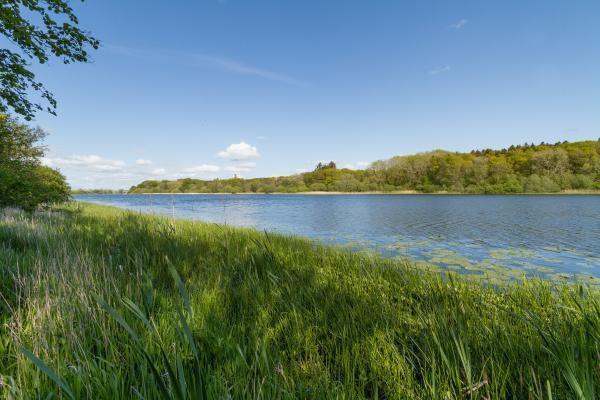 Loch Martnaham