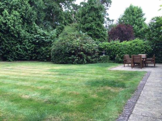 ZZ Rear Garden