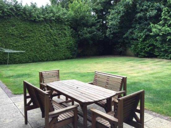 ZZZ rear garden3
