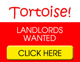 Get brand editions for Tortoise Property Management & Rentals LTD, Peterborough