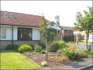 2 bed semi detached property in SILVERBIRCH CLOSE...