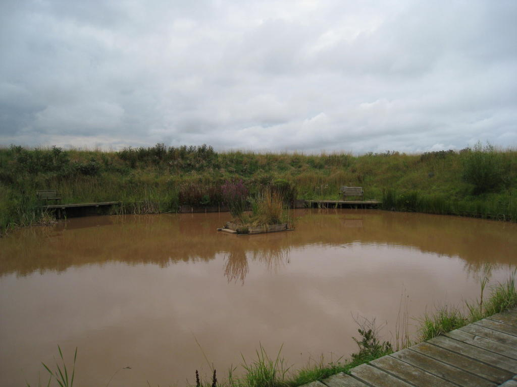 TOFTS FARM, POND