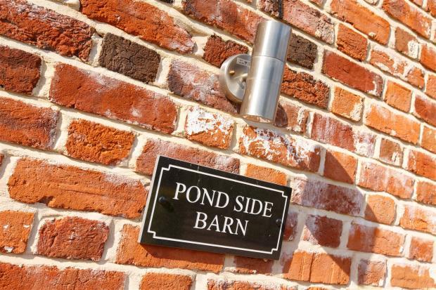 PondSide-030.jpg