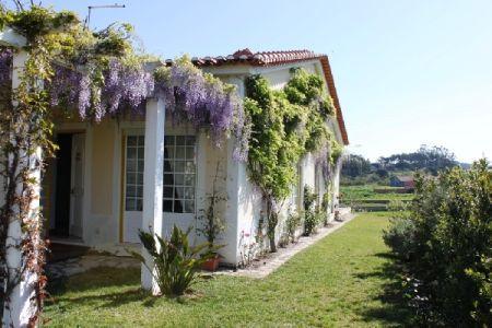 Image 6, 4 Bedroomed Villa : AV751