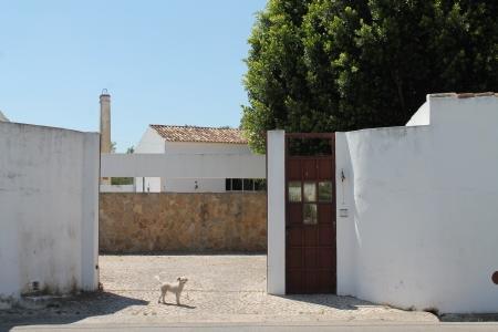 Image 7, 6 Bedroomed House : JV1566