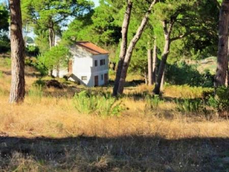 Image 1, 3 Bedroomed House : AV1595