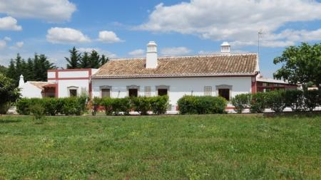 Image 19, 3 Bedroomed Villa : JV1700