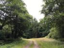 Land for sale in Dennicksball Wood...